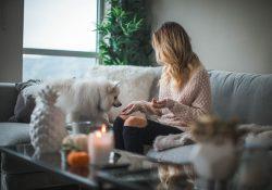 Värmepumpar för behaglig inomhusmiljö